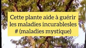 GUÉRIR TOUTES LES MALADIES MYSTIQUES